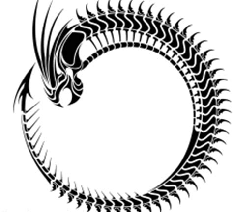tribal dragon circle image design free image tattoo