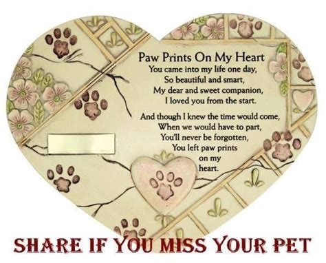 paw prints   heart quotes quotesgram