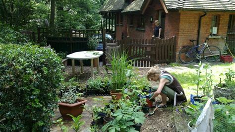 Johnny S Garden by Great Gardens Start With A Plan Jackson Free Press