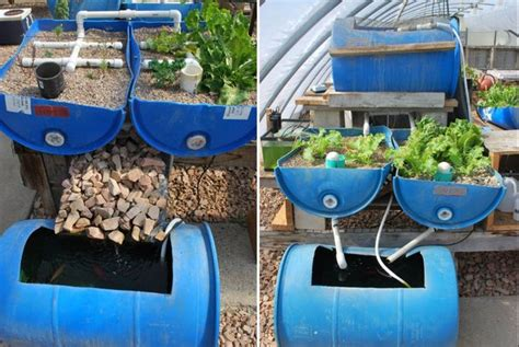 Small Fish Farm In Home Build A Vertical Aquaponic Veggie Fish Farm For Small