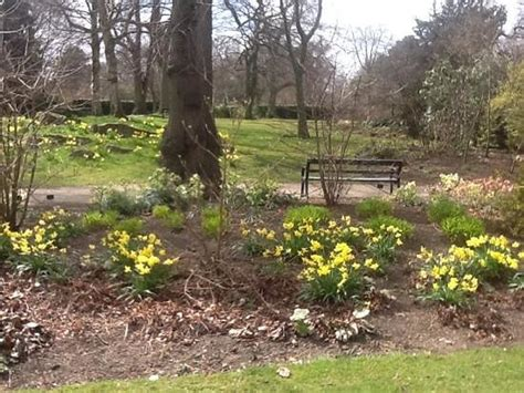 Botanic Gardens Sheffield Bloom Picture Of The Botanical Gardens Sheffield Tripadvisor