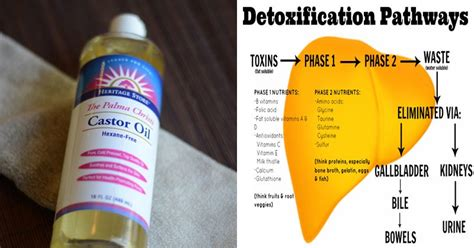 Empowering You Detox by Detox Your Liver And Fight And Inflammation With
