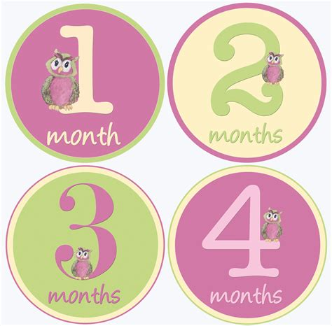 Monthly Age Stickers