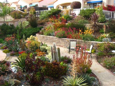 drought tolerant backyard designs landscaping san luis obispo gardens by gabriel