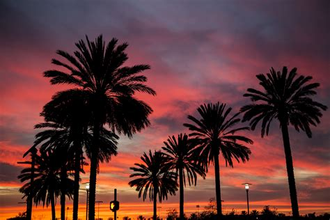 january  los angeles weather  event guide