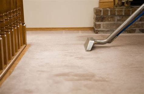 steamer rug 6 reasons why to use carpet cleaning services brixton mvir cleaning cleaning on the