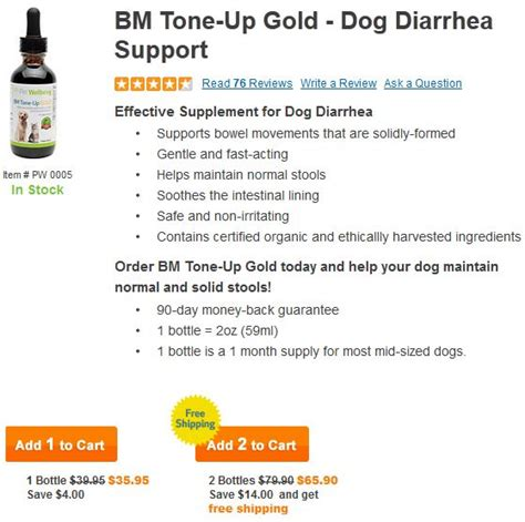 puppy diarrhea treatment bm tone up gold for diarrhea treatment orlando pet services