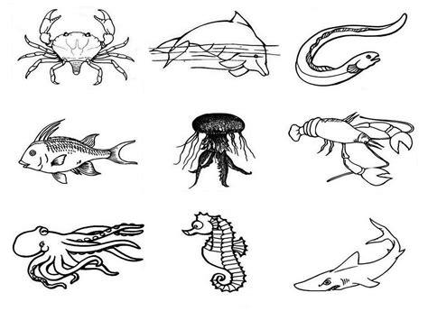 imagenes de animales marinos para imprimir dibujos de animales marinos para colorear pintar