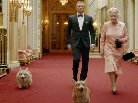 how many corgis does the queen have monty one of the queen s corgis who starred in daniel