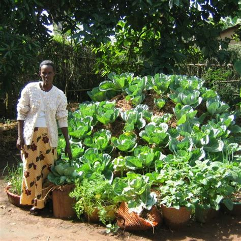 Donate a Keyhole Garden to a Family in Africa