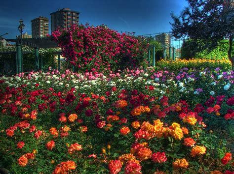descargar imagenes de jardines gratis flores paisaje edificios jard 237 n parque estambul