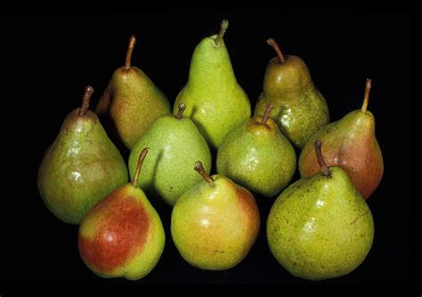12 best images about pear mad tasty winter pear compote