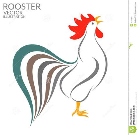 Singing Rooster Stock Vector   Image: 55311466