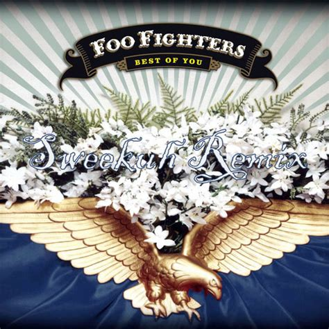 foo fighters the best of you mp3 foo fighters best of you wembley jarapuz mp3