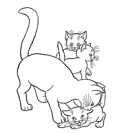 coloring pictures of baby kittens free coloring pages of baby kitten