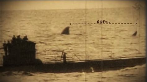 german u boats ww2 documentary submarine shark caught on tape nazi photo siezed during