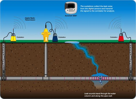 water leak detection saves time and money by eliminating