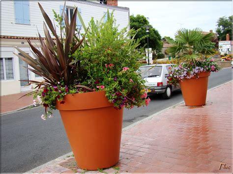 gros pot de fleur 2740 gros pot de fleurs wikilia fr