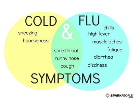 flu symptoms is it a cold or the flu sparkpeople