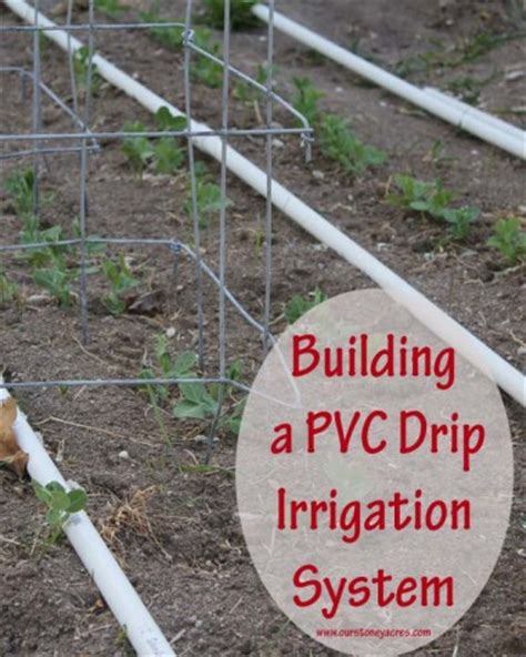 drip irrigation systems for vegetable gardens pvc drip irrigation system for your garden stoney acres