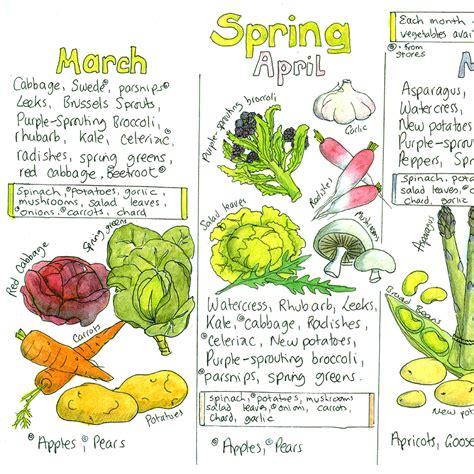 vegetables chart seasonal uk fruit and vegetable chart liz cook charts