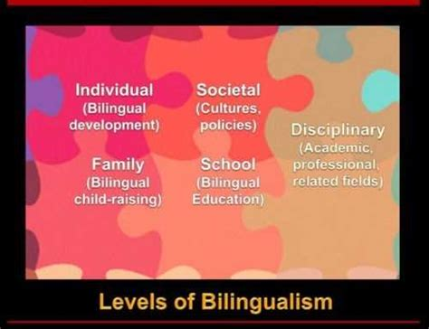 Bilingual Childhood Essay by Bilingual Education Research Papers Paper Masters