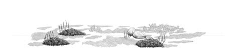 Sketches Grassy Land by How To Draw Grass Ground And Rocks