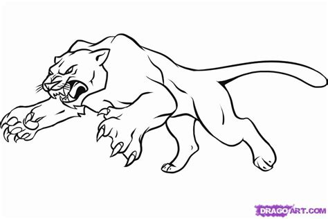 panthers color black panther coloring page coloring home