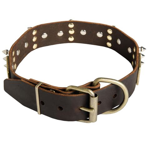 rottweiler collar war design leather rottweiler collar decorated with plates and spikes