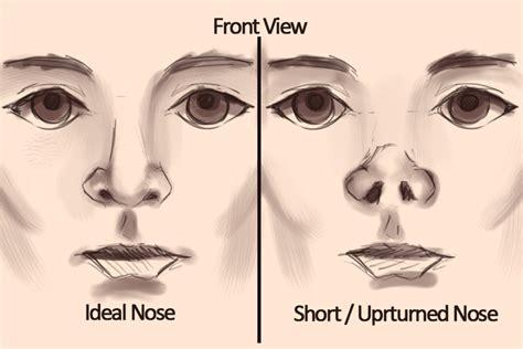 kibbe short nose big eyes short nose claravall rhinoplasty
