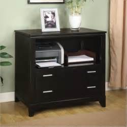 Printer Storage Cabinet Wynwood Palisade Printer Filing Cabinet In Contemporary Filing Cabinets Other