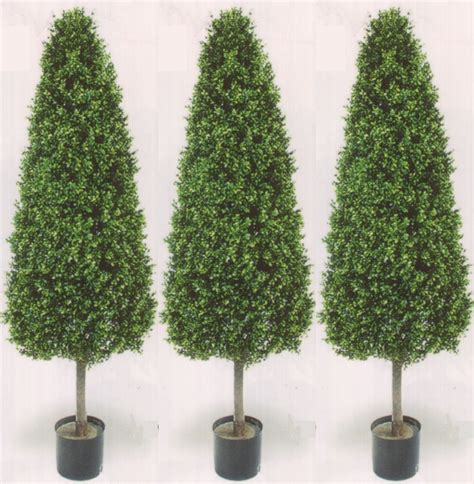 three 56 inch outdoor artificial boxwood cone topiary