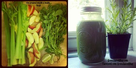 Lung Detox Juice Recipe by Green Juice Recipe Lung Power Green Juice A Day