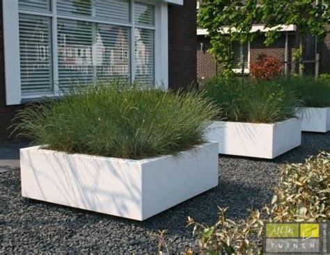 grote betonnen bollen tuin moderne tuinen hoveniersbedrijf all in tuinen