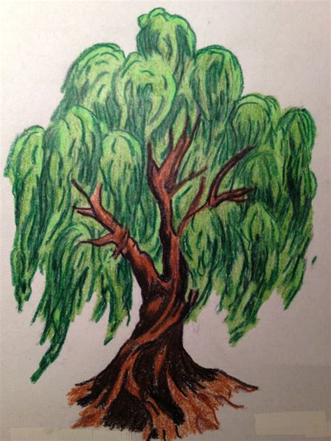 willow tree tattoo 180 best images about weeping willows on trees