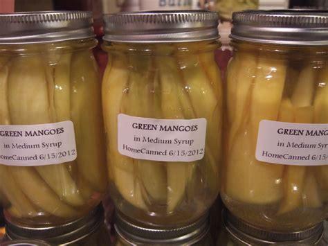 buro mangga kusina ni manang fermentation quot burong mangga quot fermented