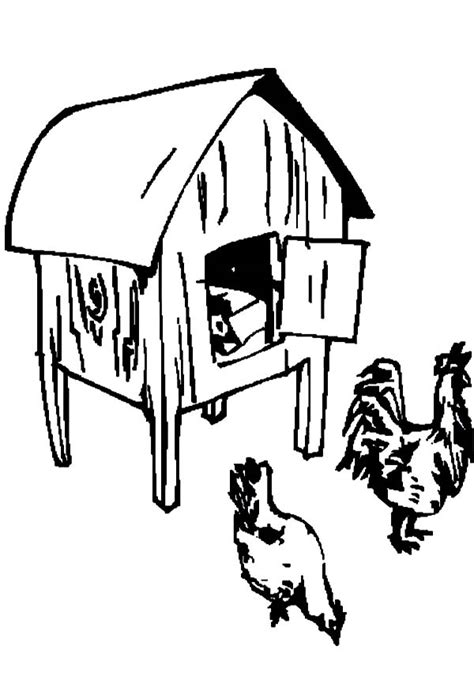 coloring page chicken coop finding food in front of chicken coop coloring pages netart