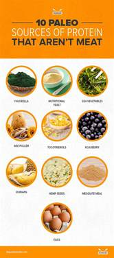10 paleo sources of protein that aren t meat