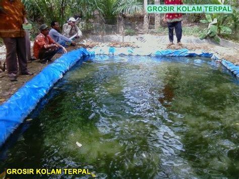 Harga Kolam Terpal Orchid Kotak lele kolam terpal agro terpal