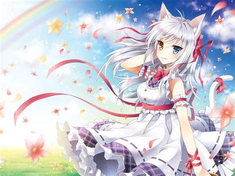 anime girl with cat wallpaper anime images 24888 anime girls catgirl anime catgrils hd