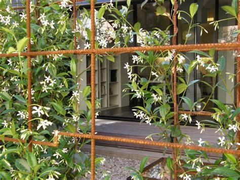 rebar garden rebar uses as trellis and vertical garden trellis