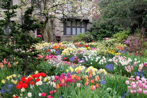 Attractive Cottage Gardens Nursery #3: 203062-675x450-spring-garden.jpg