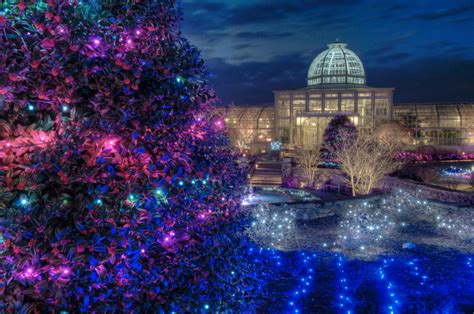 lewis ginter botanical garden lights family in richmond va wherever family