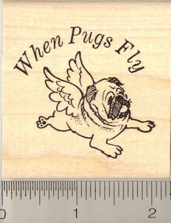 when pugs fly 17 best images about pugs
