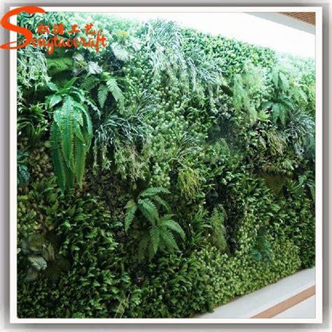 große pflanzen innen vertikaler dekor garten