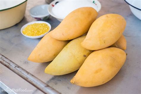 Thai Mango Sticky Rice Ketan Mangga Dari Blumango Small Pax kumpulan resep jajanan thailand kekinian mulai dari thai tea sai ketan durian