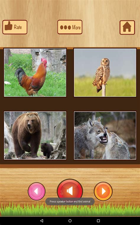 animal sounds app  kids screenshot