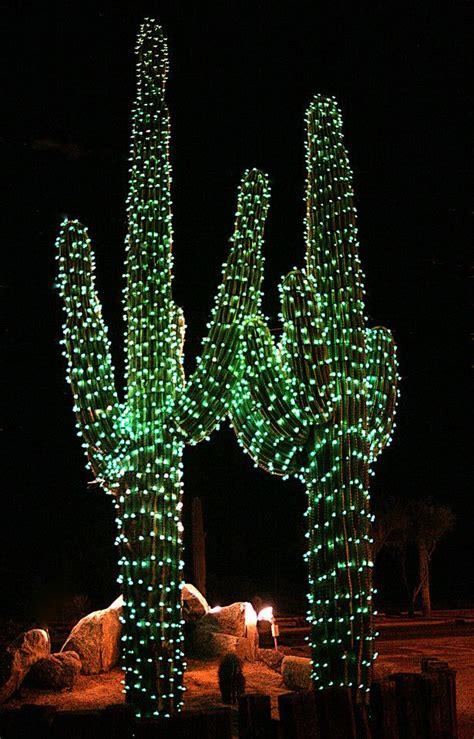 usa arizona saguaro cactus  christmas places spaces iii pinterest  winter