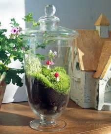 terrarium len quot ngẩn ngơ quot với tiểu cảnh terrarium trang tr 237 nh 224 cực đẹp