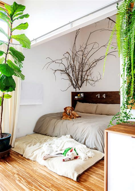 bedroom plants design highlight bedrooms using live plants as decor